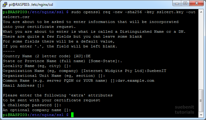 SSL Zertifikat mit OpenSSL. Dabei common name mit Subdomain.