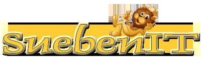 SuebenIT